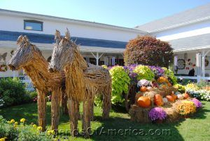 Shipshewana, IN - Autumn Display
