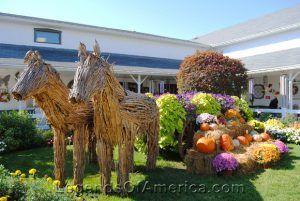 Shipshewana, IN - Autumn Display