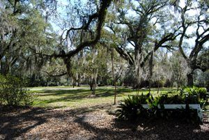 Myrtles Plantation Grounds, Louisiana