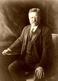 Theodore Roosevelt, 1910