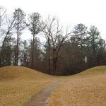 Bynum Mounds