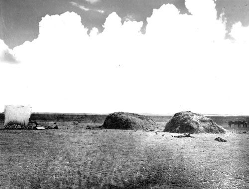 The Hay Meadow Massacre took place in a hay meadow that was actually in Oklahoma.