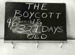 Cairo Boycott