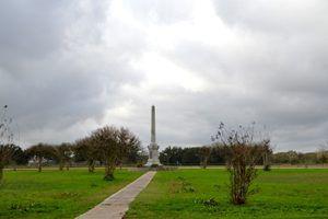 Fannin Battlefield