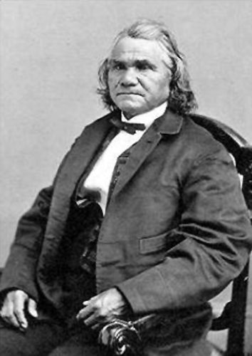 Image result for stand watie