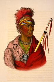 Not-Chi-Mi-Ne, Ioway Chief, by John T. Bowen.