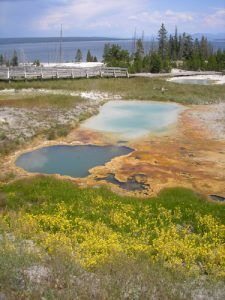 Yellowstone Lake Pots