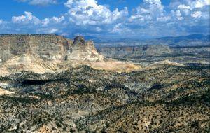 White Cliffs of Utah