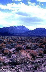Bald Mountain in Nevada