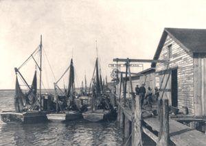Shrimp boats in Bruswick, Georgia.