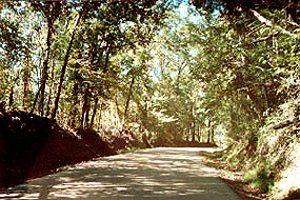 Rodney Road, Mississippi