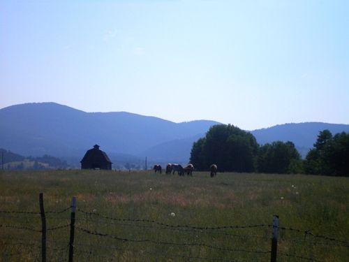 Deer Lodge Valley, Montana