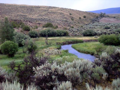 Grasshopper Creek, near Bannack, Montana