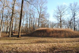 Indian Mounds at Shiloh National Park