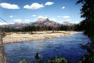 Yellowstone, courtesy Yellowstone Mountain Guides