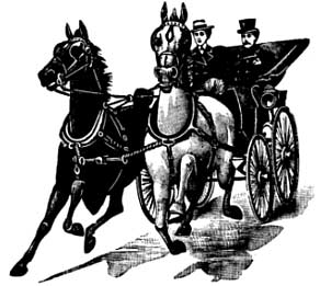 Couple in horse and buggy