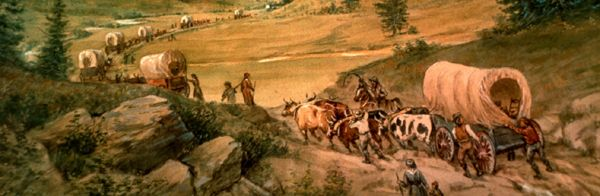 Ox wagons on the trail