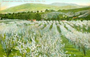Santa Clara Valley, California