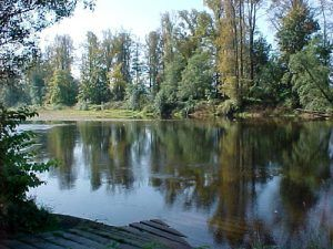 Satsop River, Washington