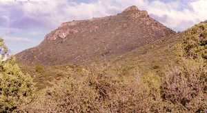 Turett Peak, Arizona by Jeff Burgess