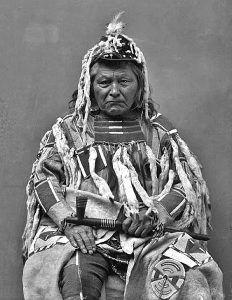 Walla Walla Chief Peopeomoxmox
