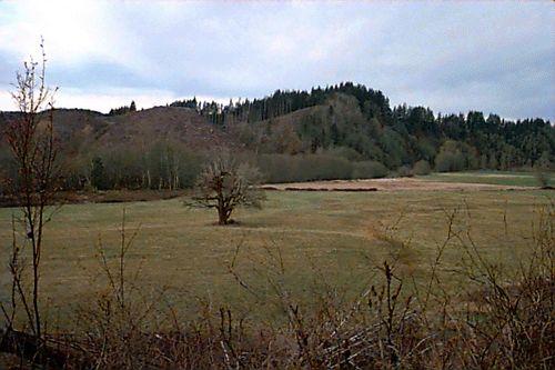 Wynoochee Valley, Washington