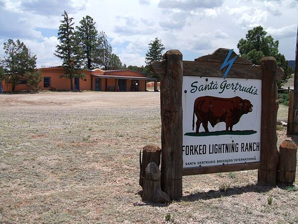 Forked Lightning Ranch New Mexico Legends Of America