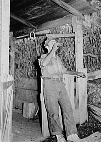 Miner drinking, Marion Post Wolcott, 1938