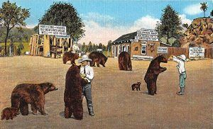 Pigeon Ranch Postcard