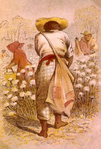 Slave in cotton field, Henry L. Stephens, 1863