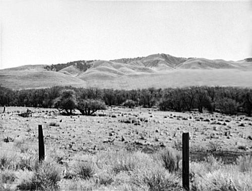 Tehachapi Mountains