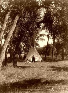 Indian camp in the Cottonwood Trees