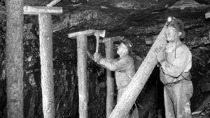 Colorado Coal Miners