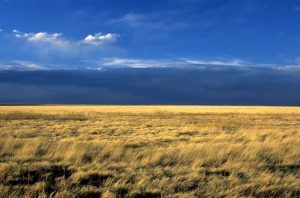 Comanche National Grasslands, Colorado