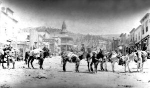 Pack burros on Victor Avenue, Victor, Colorado about 1900