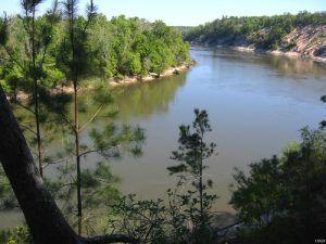 Apalachicola River, Florida
