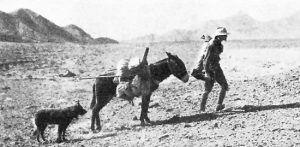 Prospector in Death Valley, California