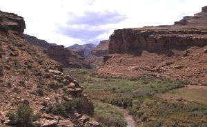 Nine Mile Canyon, Utah by the Bureau of Land Management