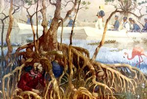 Much of the fighting during the Seminole Wars were fought in the swamps of Florida.