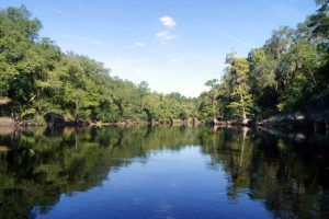 Suwannee River, Florida courtesy Authentic Florida