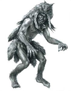 Skinwalker, a Navajo Witch