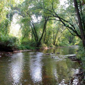 Armstrong Creek, Halifax, Pennsylvania