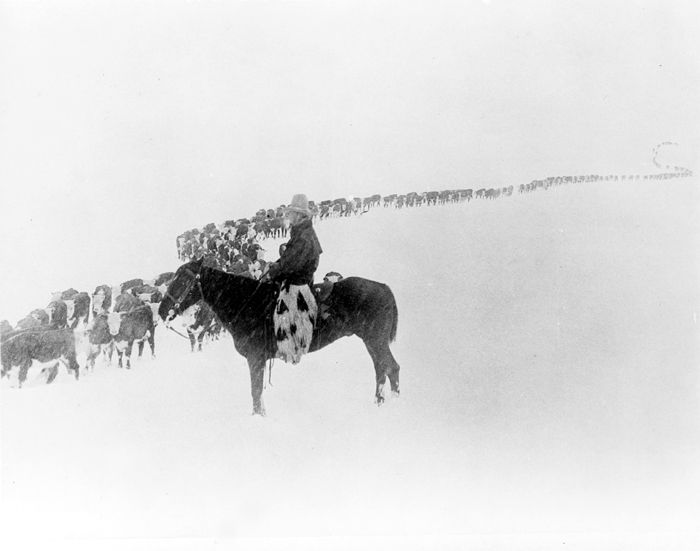 Cowboy in the Winter in Wyoming by Charles Belden, 1923