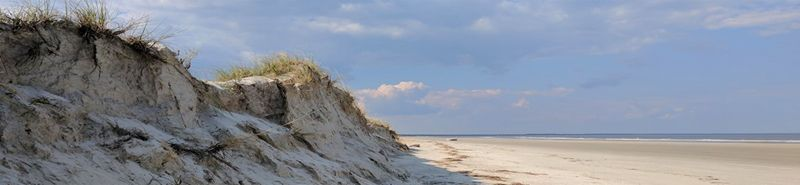 Cumberland Island National Seashore by the National Park Service