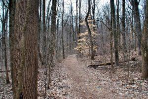 Monocacy Trail