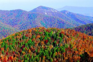 Shenandoah National Park, Virginia by the National Park Service