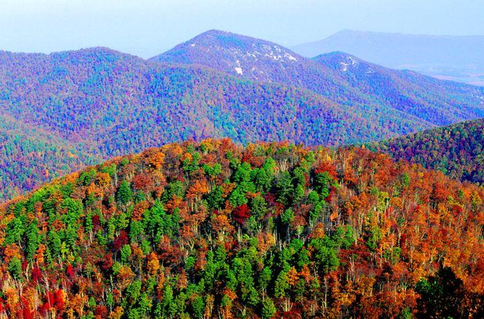 Shenandoah National Park, Virginia by the National Park Service