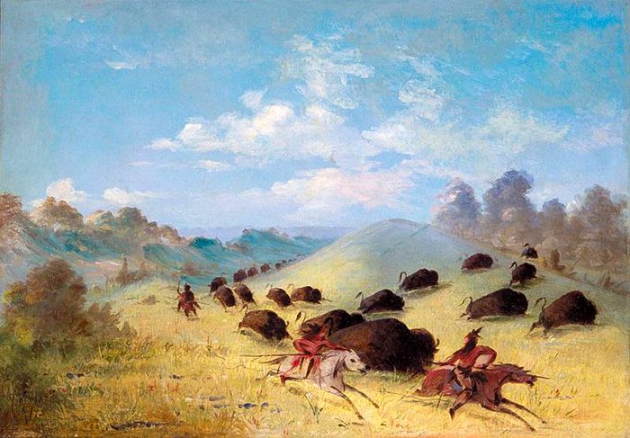 Comanche Hunting Buffalo by George Catlin
