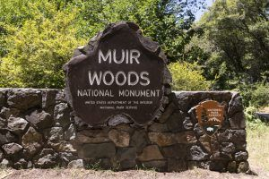 Muir Woods National Monument Sign by Carol Highsmith.