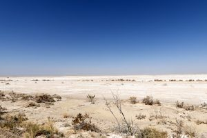 Salt flats in Hudspeth County, Texas by Carol Highsmith.
